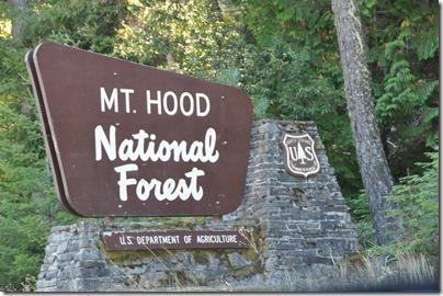 Mt Hood 111