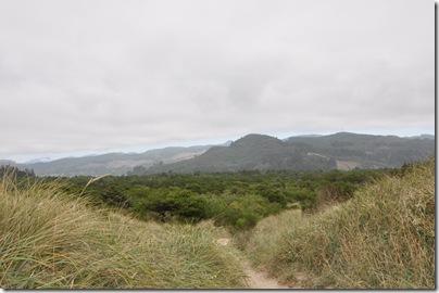 Nehalem State Park 089
