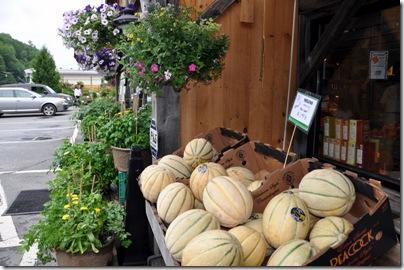 Vermont 2010 132