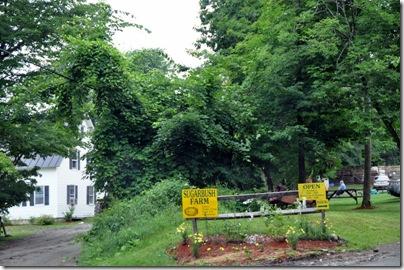 Vermont 2010 089
