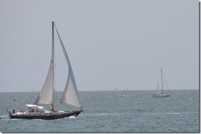 Cape Cod, MA 076