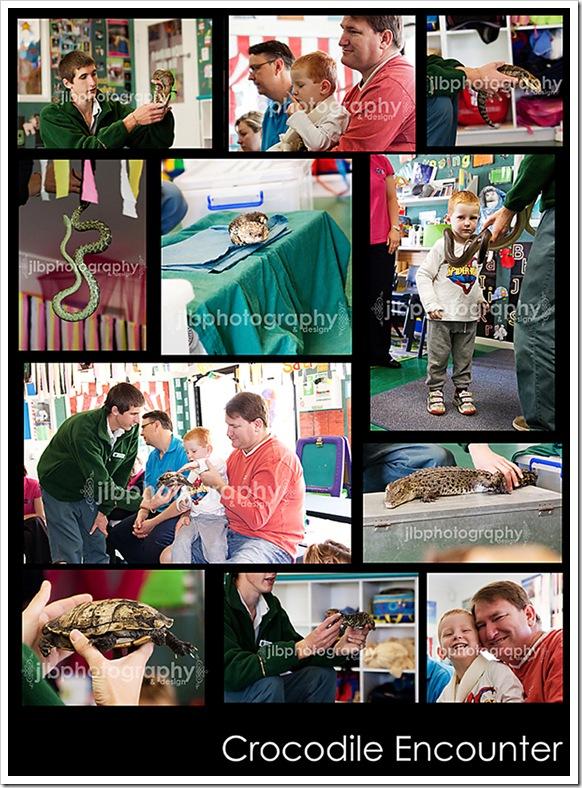 croc blog board 8 x10 jlbp