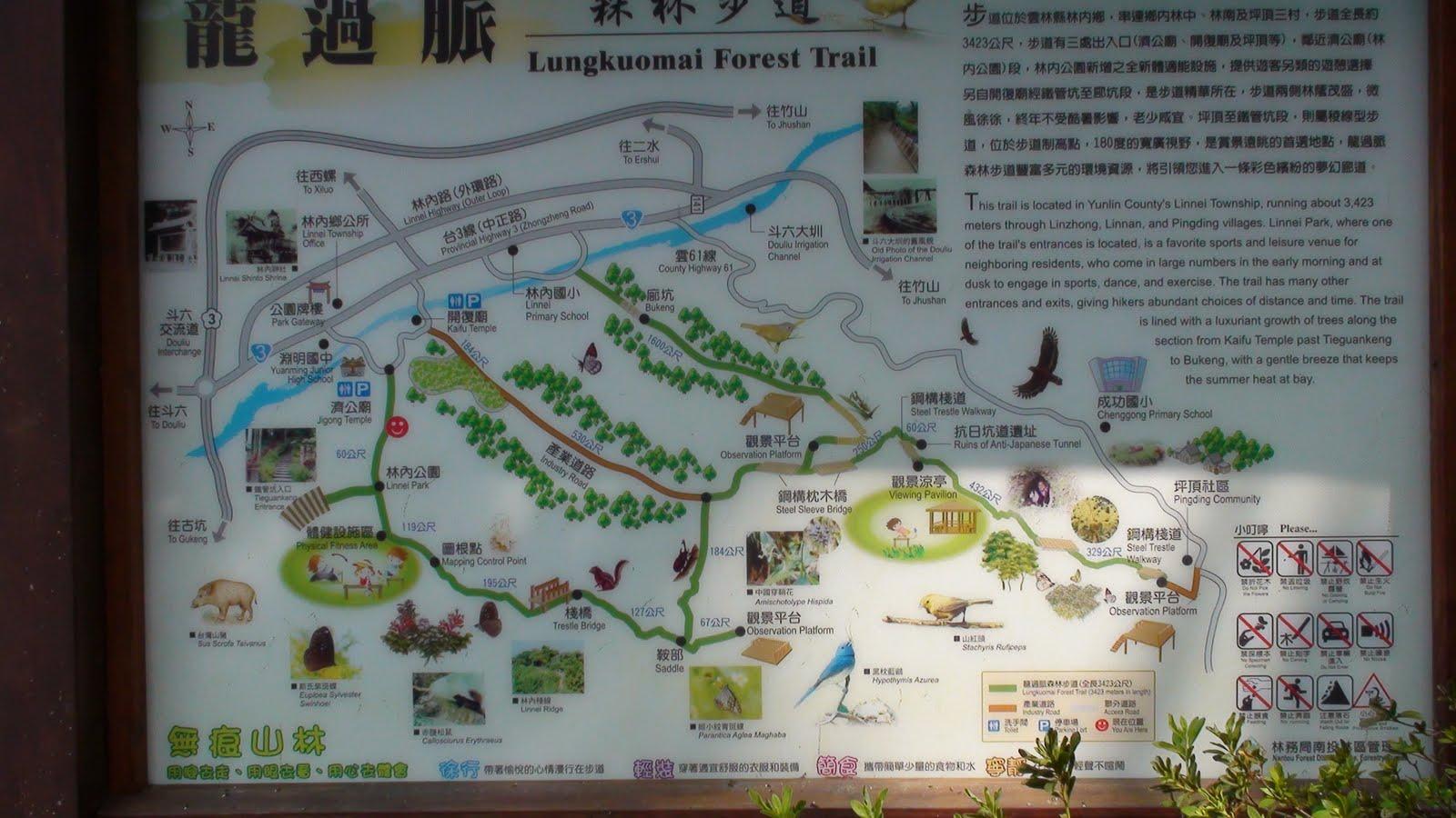 林內-龍過脈森林步道