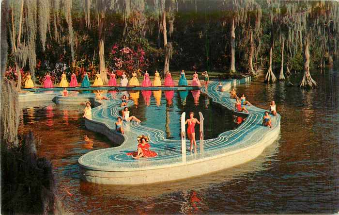 Vintage Postcard Blog Cypress Gardens Mgm Set Esther Williams Swimming Pool