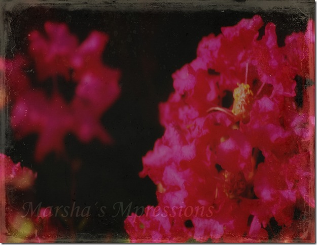 hot pink with textures negative thoughts and blurred copy w watermark