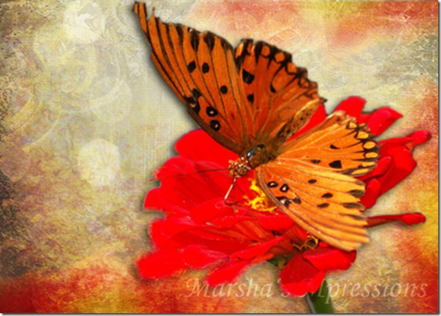 butterfly with effects w watermark