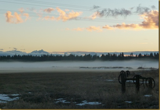 fog 015