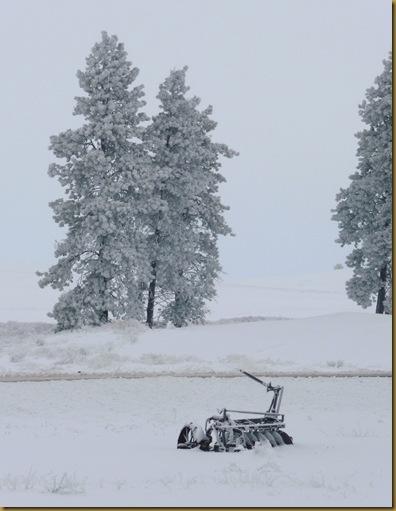 2010 snow 013