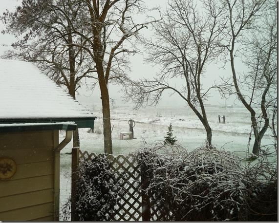 april snow 002