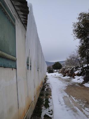 Cortina de hielo