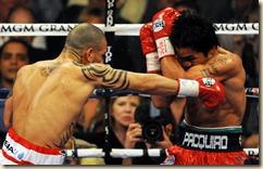 fight15