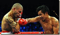 fight19