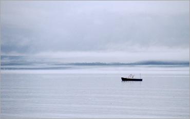 Misty Morn 4