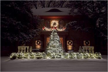 Ziser Christmas 2010 - IMG_5099
