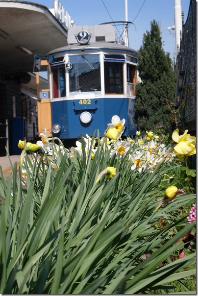 capolinea del tram di Opicina a Trieste