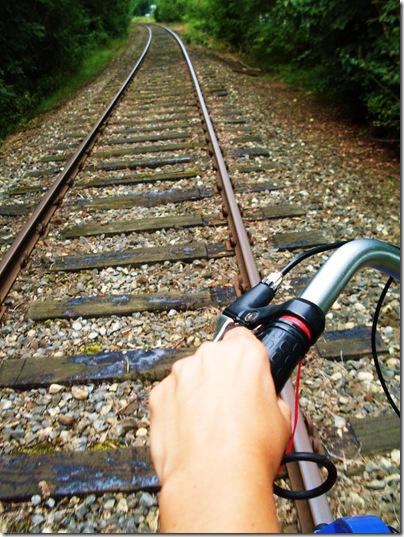 A bordo del Draisine sulla ferrovia di Rinteln