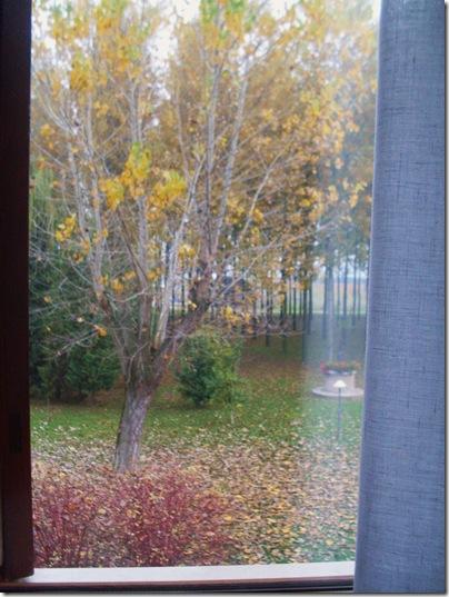 la vista dalla camera dell'Hotel leon d'oro a Mirano