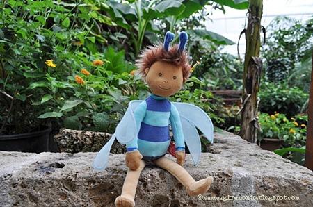Flint, the dragonflyboy