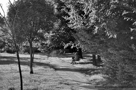 autumnDSC_1027
