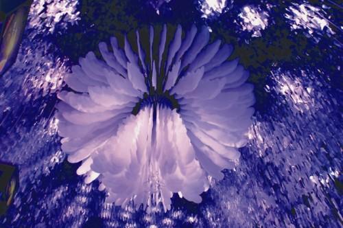 台北花博-走進夢想館內大廳,展現寬達6米的巨型動力機械花朵與緊緊包裹著的重重葉片,讓人驚豔-喜生米漢堡分享