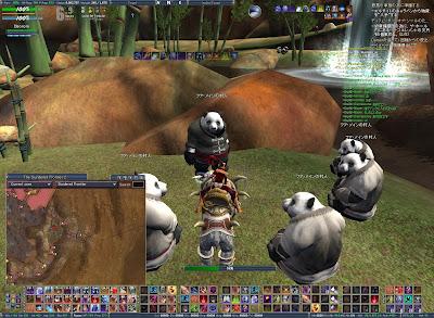 パンダにガンミされる①
