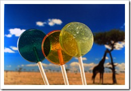 Turquose, Gold and Seafoam Green lollipops in the foreground; giraffe on savannah in background