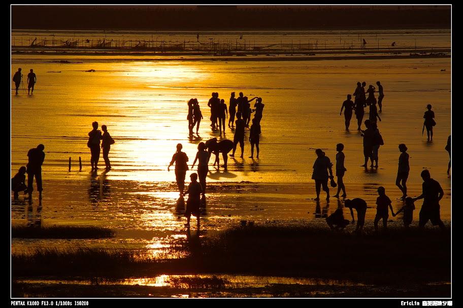高美濕地夕照