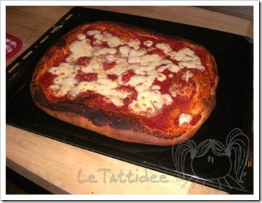 pizzaultimacottura