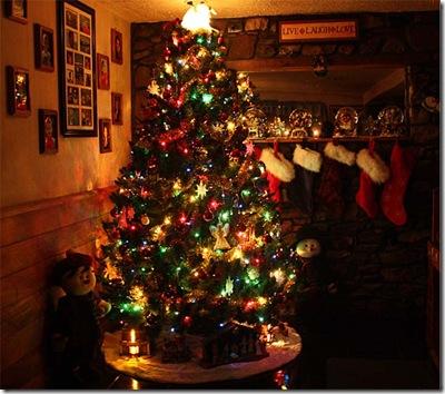 My Tree 2008