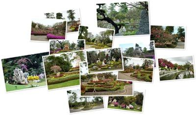 """Просмотр альбома """"Таиланд Паттая парк миллионолетних камней"""""""