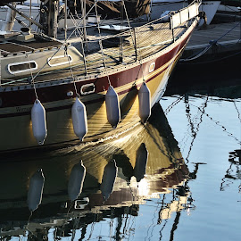 Harbour Ripples by Bryan Phillips - Transportation Boats ( reflection, sailing, harbour, moored, ripple, boat, sun )