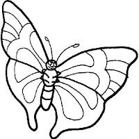 Riscos - Insectos (13).jpg