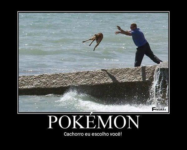 cachorro pokemon