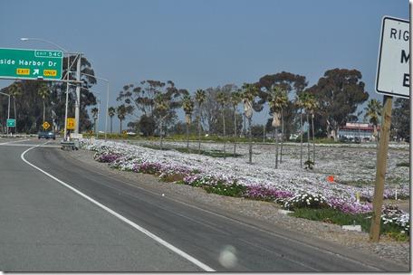 California 021