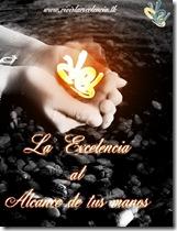 la excelencia2