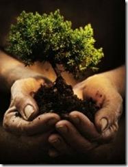 libro-de-oracion-diaria-carta-de-amor-de-dios-creador-prosperidad-universal-229x300