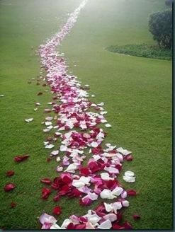 caminho de flores