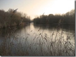 1132026_frozen_lake