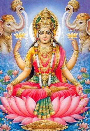 Goddess Lakshmi Cover
