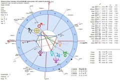 astrology-horoscope-plane-delivery-heliocentric-chart