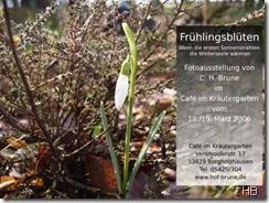 Plakat Frühlingsblüten © H. Brune