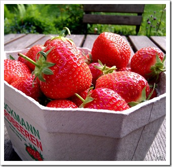 Erdbeeren © H. Brune