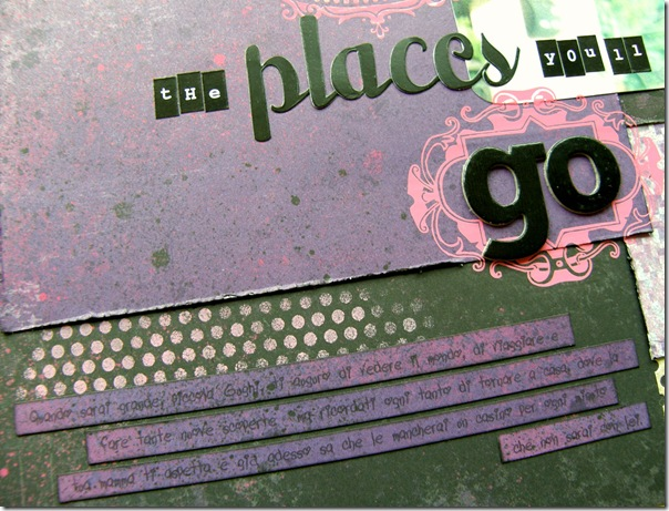 oh_the_places_closeup1