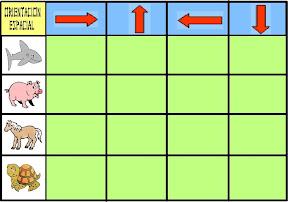 juego+de+orientaci%C3%B3n+espacial.jpg