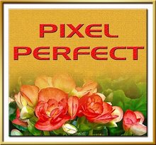 Pixel Perfect Award