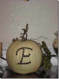 SSS_miscellaneous_home_projects,_pumpkins_056[1]