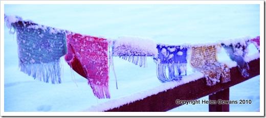 frozen flags