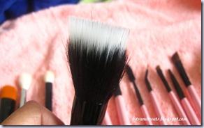 charm dual fibre brush, by bitsandtreats
