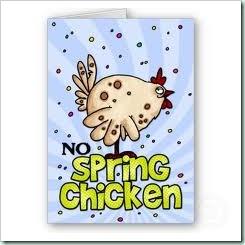 spring chicken 2