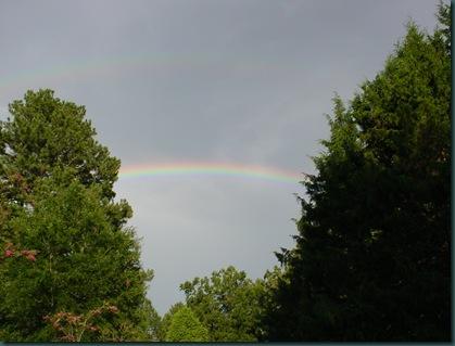 Rainbow and twins 003